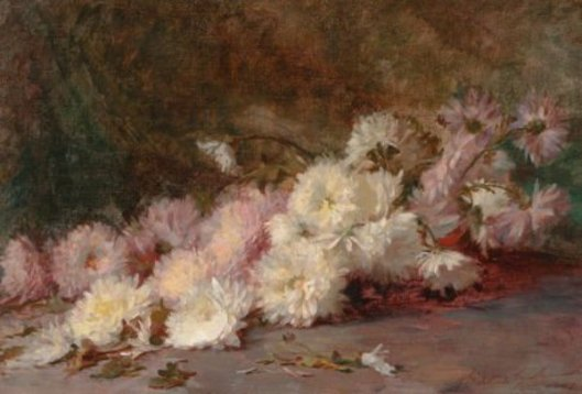 Still Life Of Pink And White Chrysanthemums
