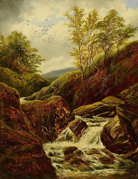 Landscape With River Cascading Over Rocks