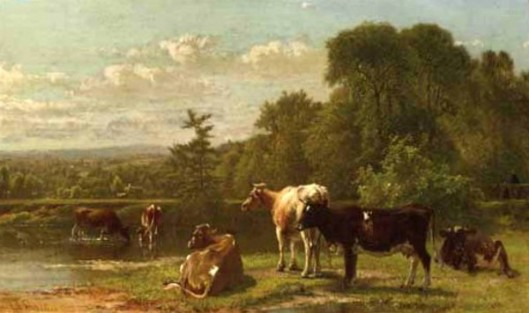 Cows At The River's Edge
