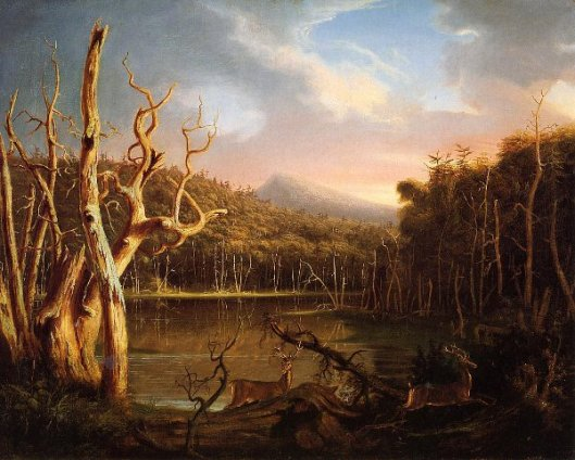 Lake With Dead Trees - Catskill