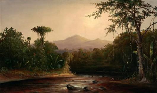 A Stream In Nicaragua