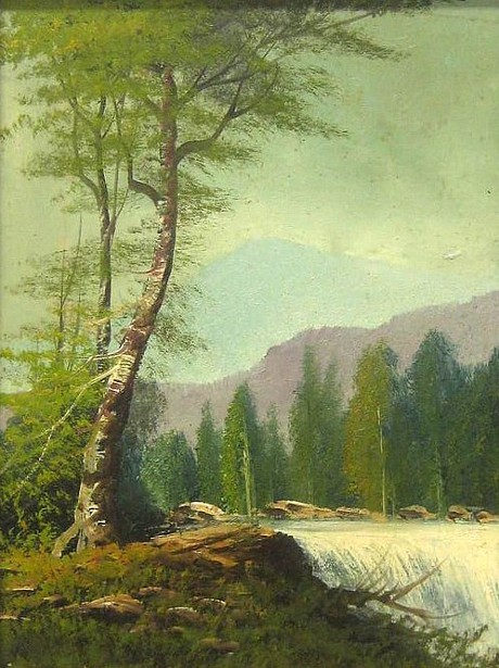 Northwest Waterfall Landscape