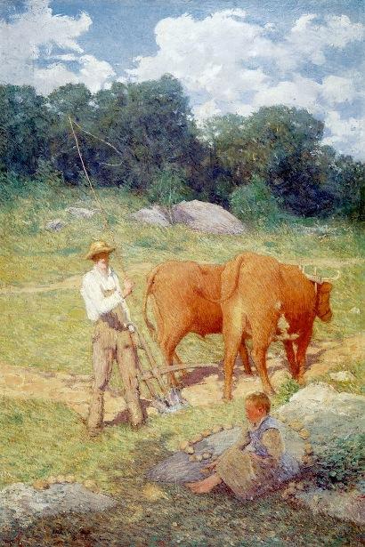 Ploughing For Buckwheat - New England Plowman