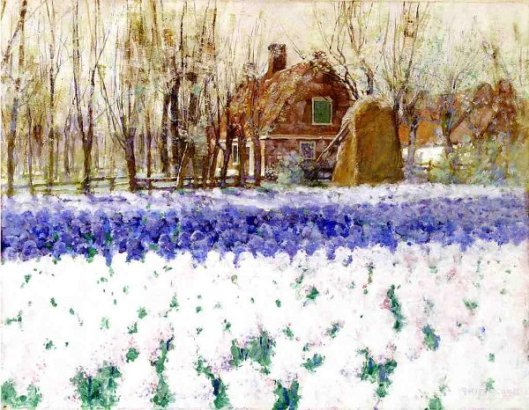 Cottage With Hyacinths