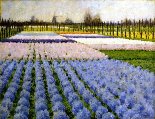Holland, Hyacinth Garden