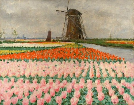 Pink Tulips - Bulb Fields With Windmill