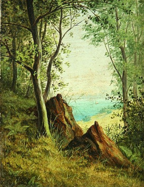 Landscape - Hillside Scene