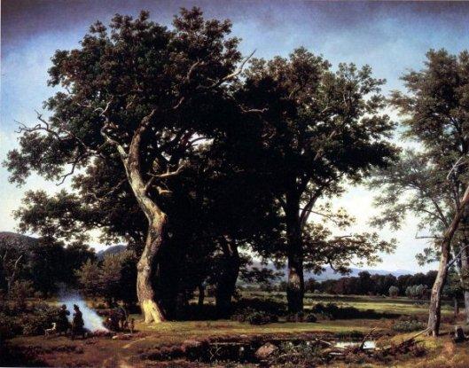 Landscape Near Minden