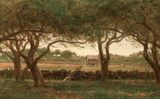 Landscape Near Newport