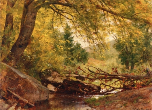 Stream In A Wooded Interior
