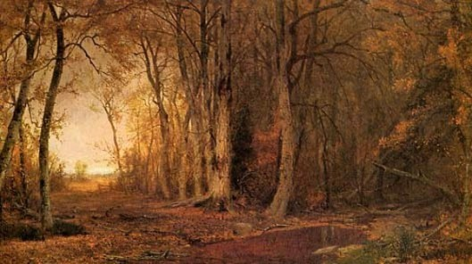 The Woods Of Assohockan, Catskills