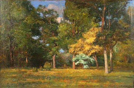 Wooded Summer Landscape