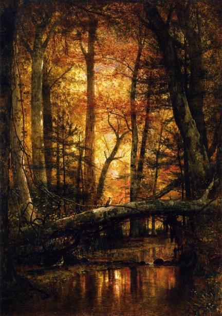 Woods Of Ashokan