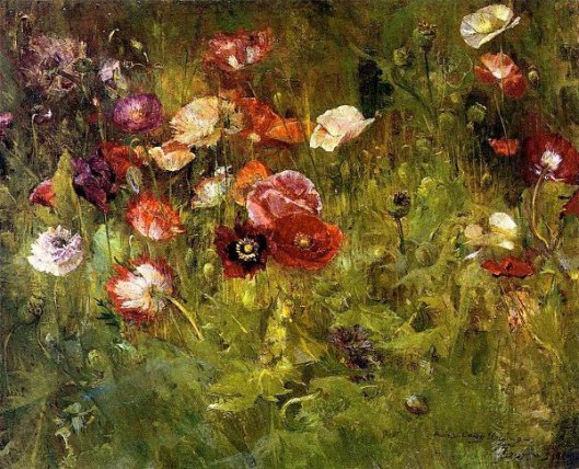 A Bed Of Poppies
