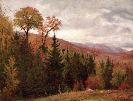 Autumnal Landscape - Near Katerskill Clove