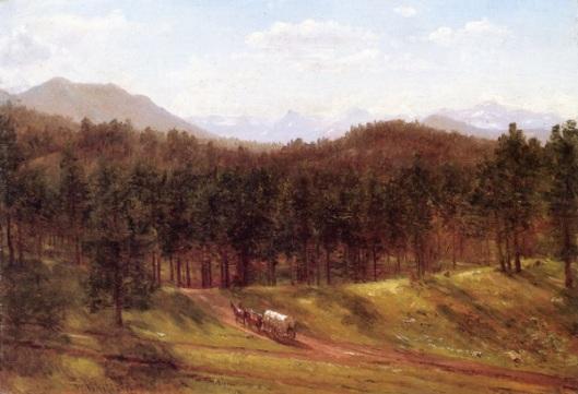 A Mountain Trail, Colorado