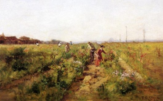 In The Berry Field