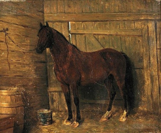Bay Horse In A Stable