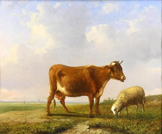Cow And Sheep Grazing In Pasture
