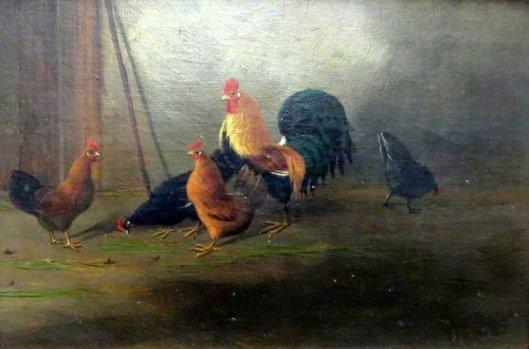 Free Range Chickens - Barnyard Chickens