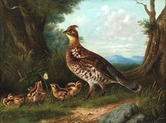 Grouse And Young (with Arthur F. Tait)