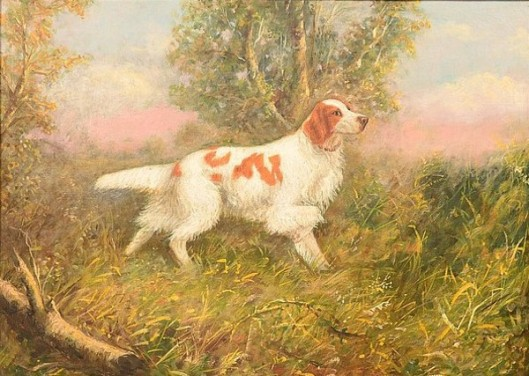 Pointing Brittany Spaniel In A Grassy  Woodland Scene