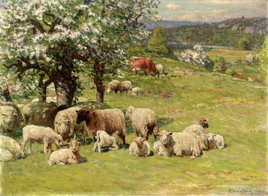 Sheep And Cattle With Apple Trees