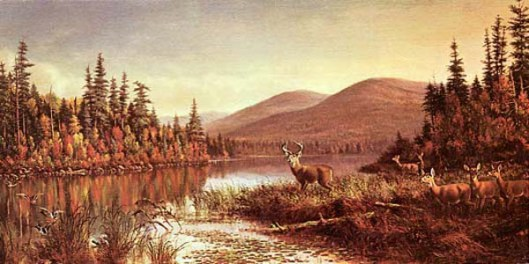 Autumn Morning, Racquette Lake