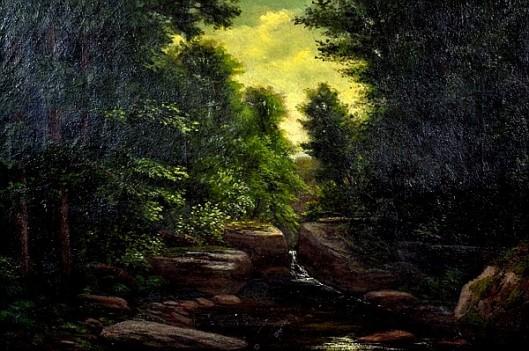 Brook At Slippery Rock