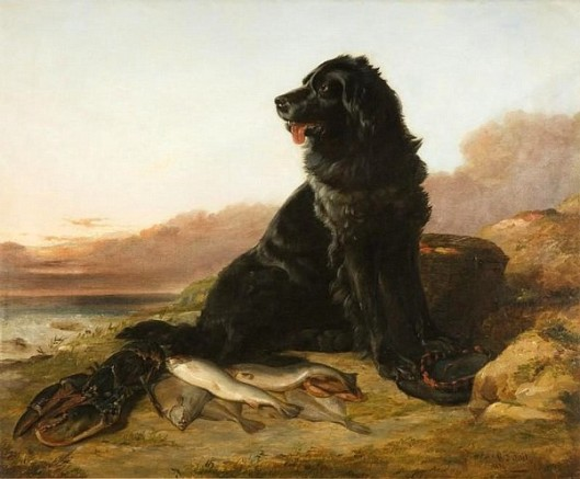 Guarding The Catch