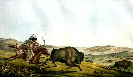 Hunting The Buffalo