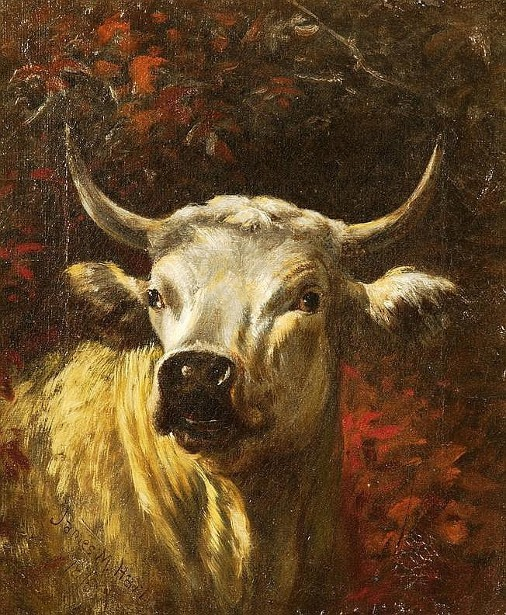 Ox's Head
