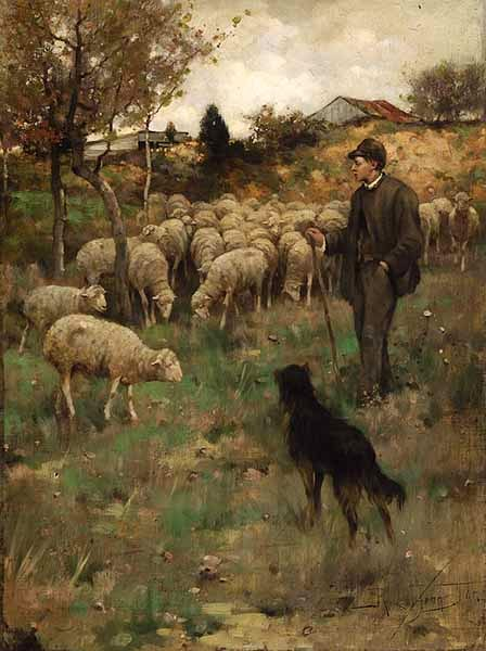 Tending Sheep