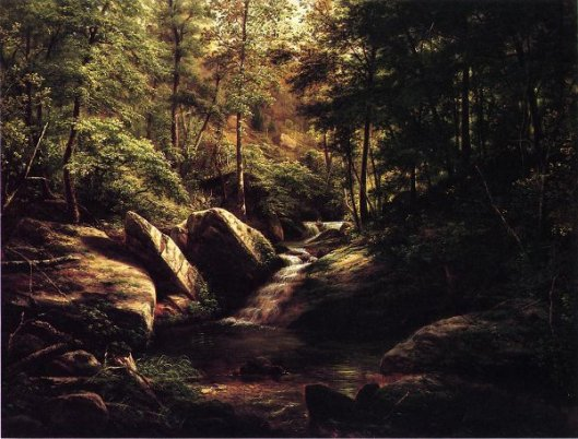 Trout Stream In The Alleghenies