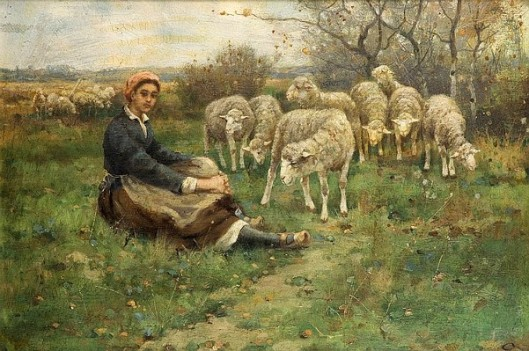 Woman With A Flock Of Sheep