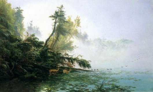 Misty Morning On Racket Lake - A Tranquil Morning