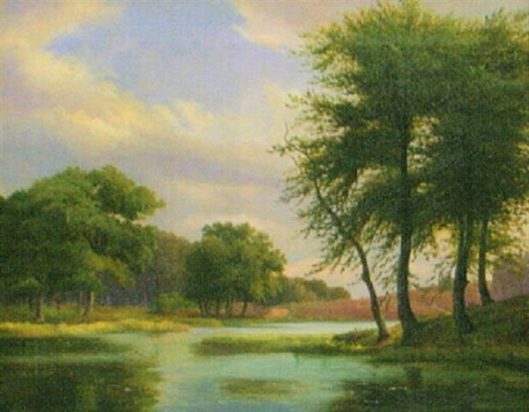 Forest Landscape With Waterways