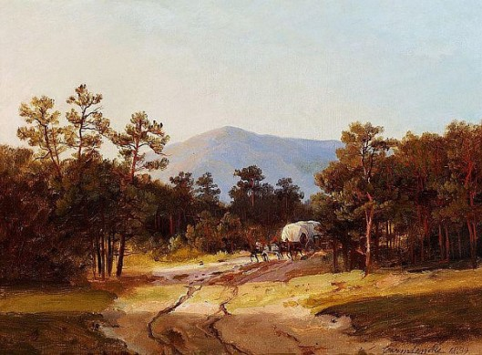 Horse-drawn Coach In The Forest