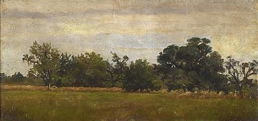 Northshore Landscape