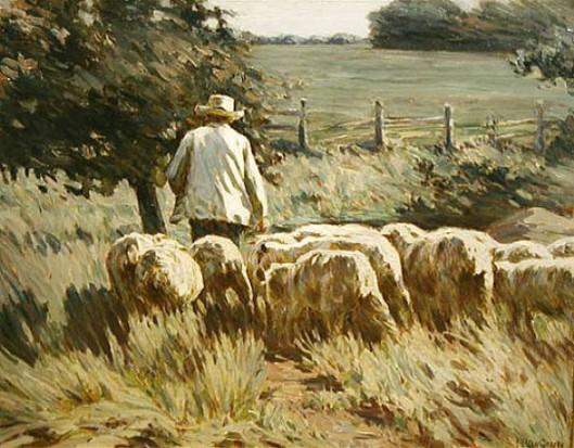 Herding Sheep - Heading Home