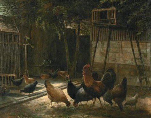 Chickens In A Barnyard