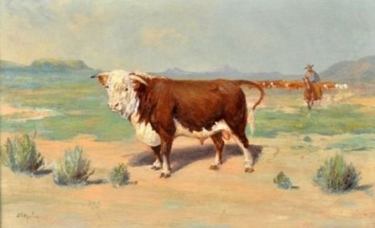Bull With Cowboy