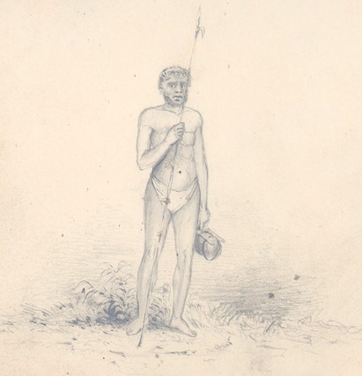 Islander Of Wytoohee
