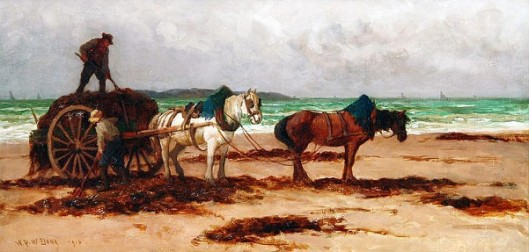Collecting The Wrack
