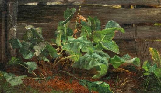 Burdock Plants Beside A Fence