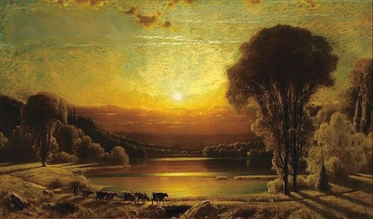 Cows Along The Riverbank At Sunset
